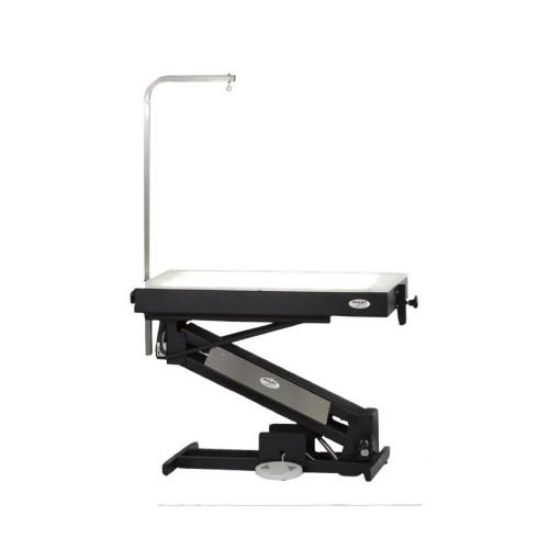 PetLift MasterLift LowRider Lighted Top Electric Grooming Table